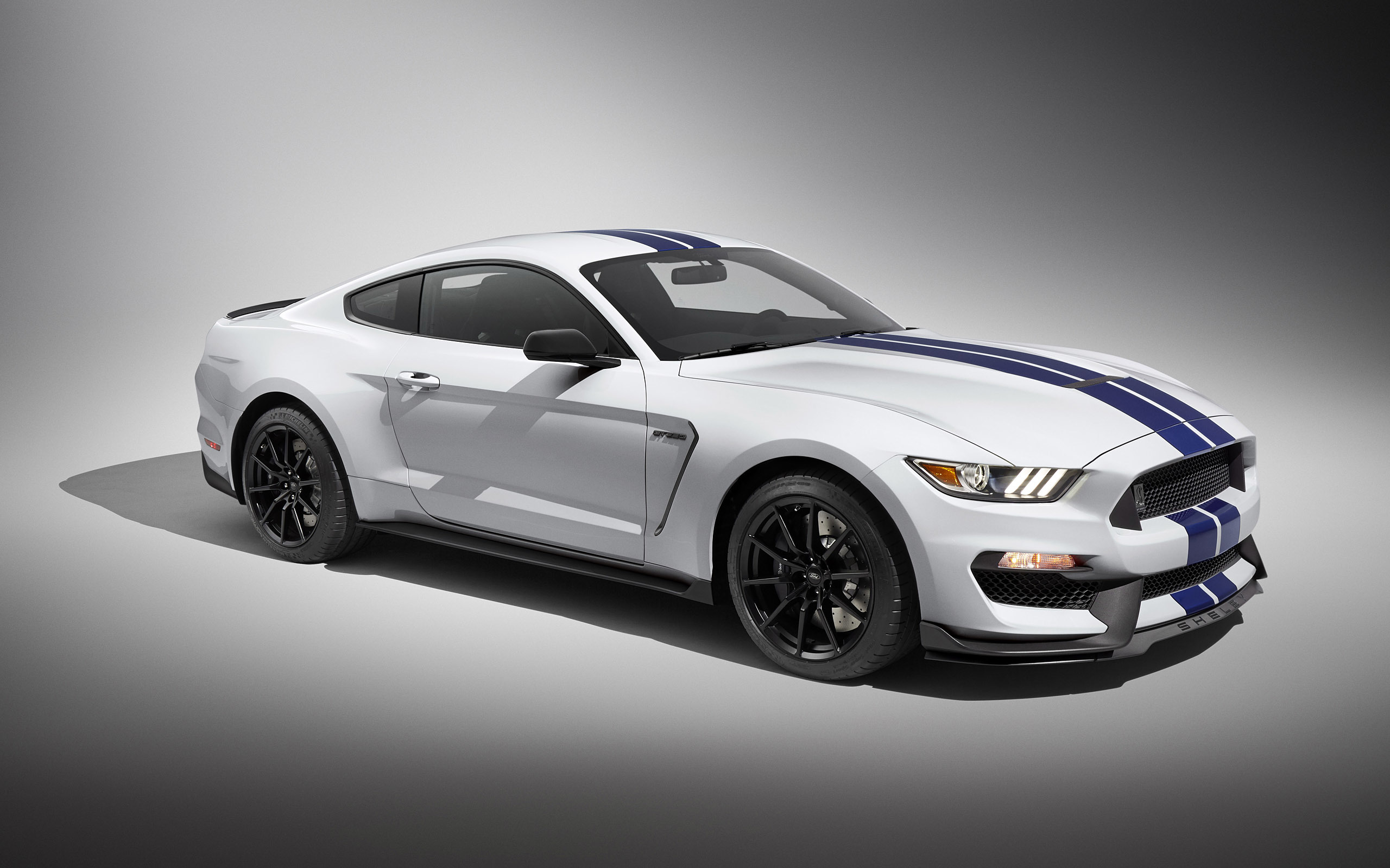Wallpapers 2016 ford mustang shelby gt350   car pictures and 2560x1600
