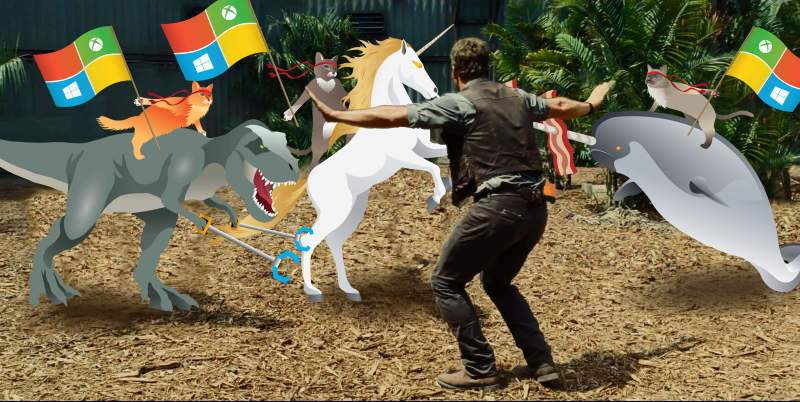 Windows 10 Wallpaper Ninjacat Download Freewarede 800x402