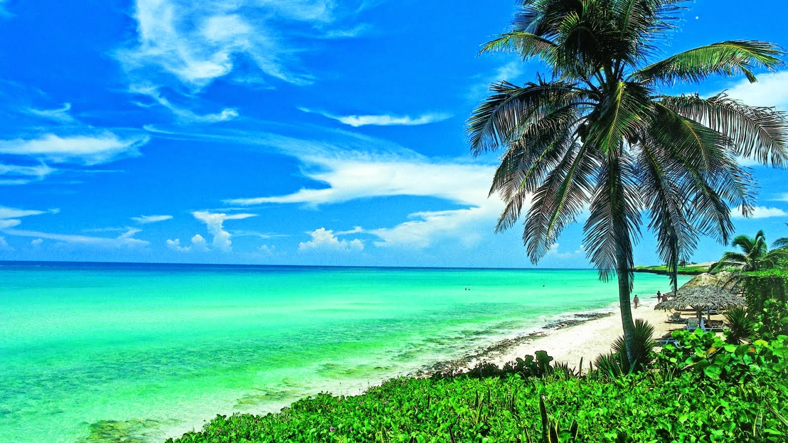 Hd Tropical Island Beach Paradise Wallpapers And Backgrounds: 3D Wallpaper HD 1680x1050