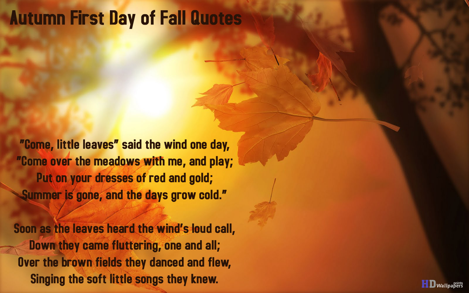 Autumn First Day of Fall Quotes Wallpapers 1600x1000