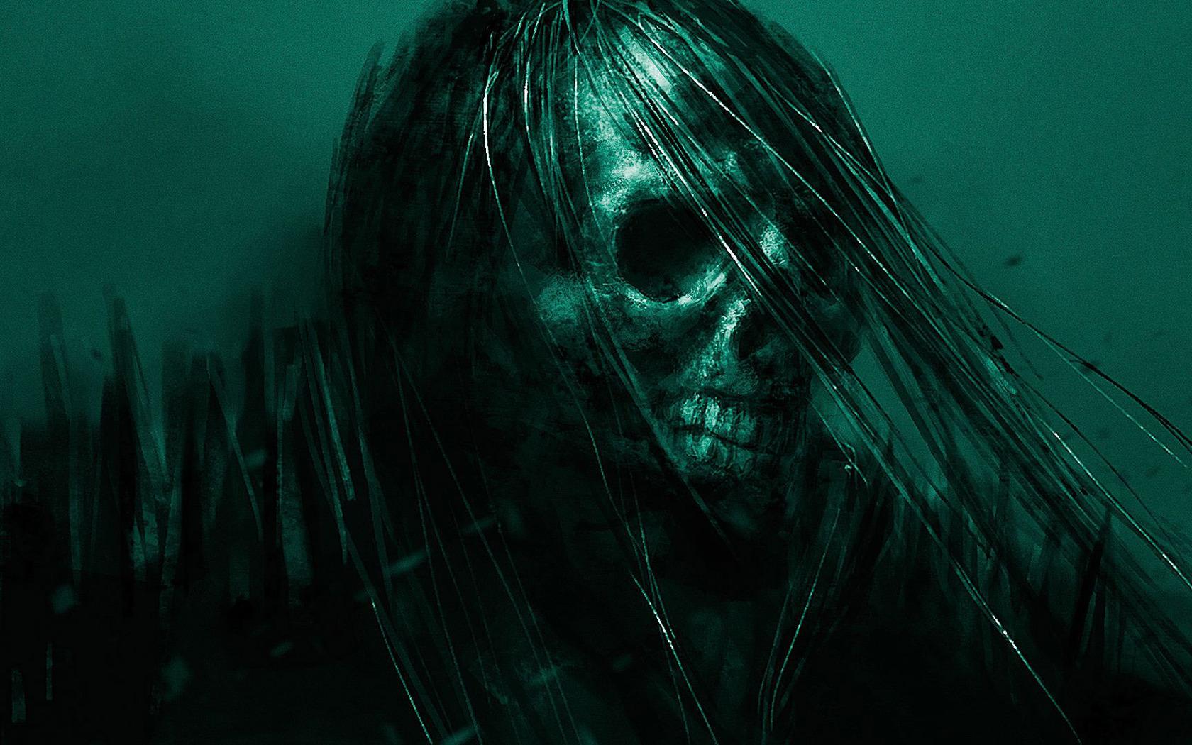Skull wallpaper 19614 1680x1050