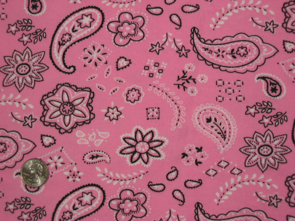 Pink Bandana Graphics Code Pink Bandana Comments Pictures 1024x768