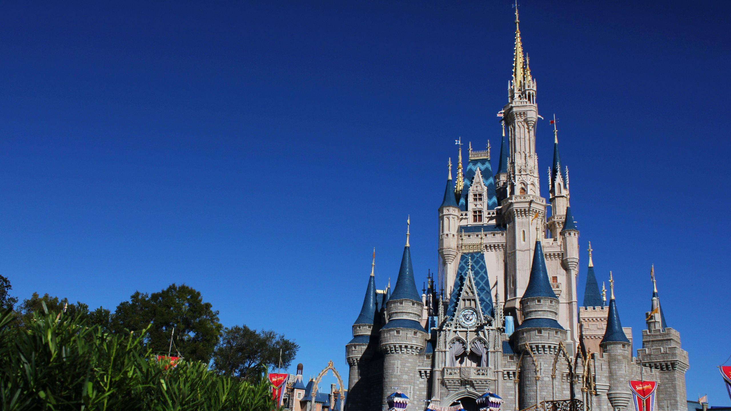 Magic Kingdom Disneyland 2560x1440