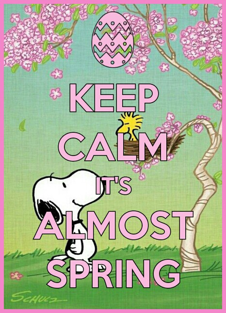 Keep Calm its almost Spring MONDAY Other Days of the Week Pinte 466x646