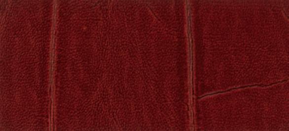 Faux Leather   Brick [Gator   Brick] Designer Wallcoverings 586x265