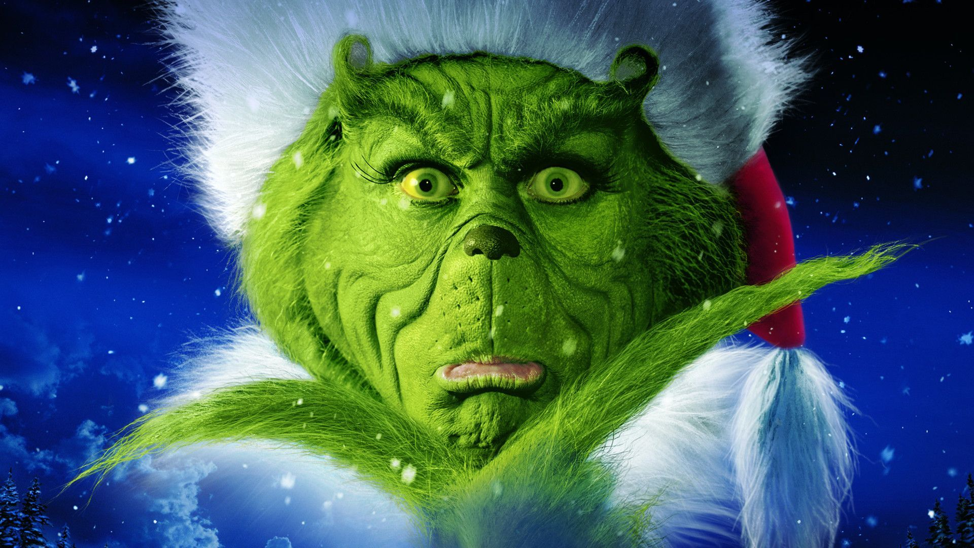 Funny Grinch Wallpapers   Top Funny Grinch Backgrounds 1920x1080