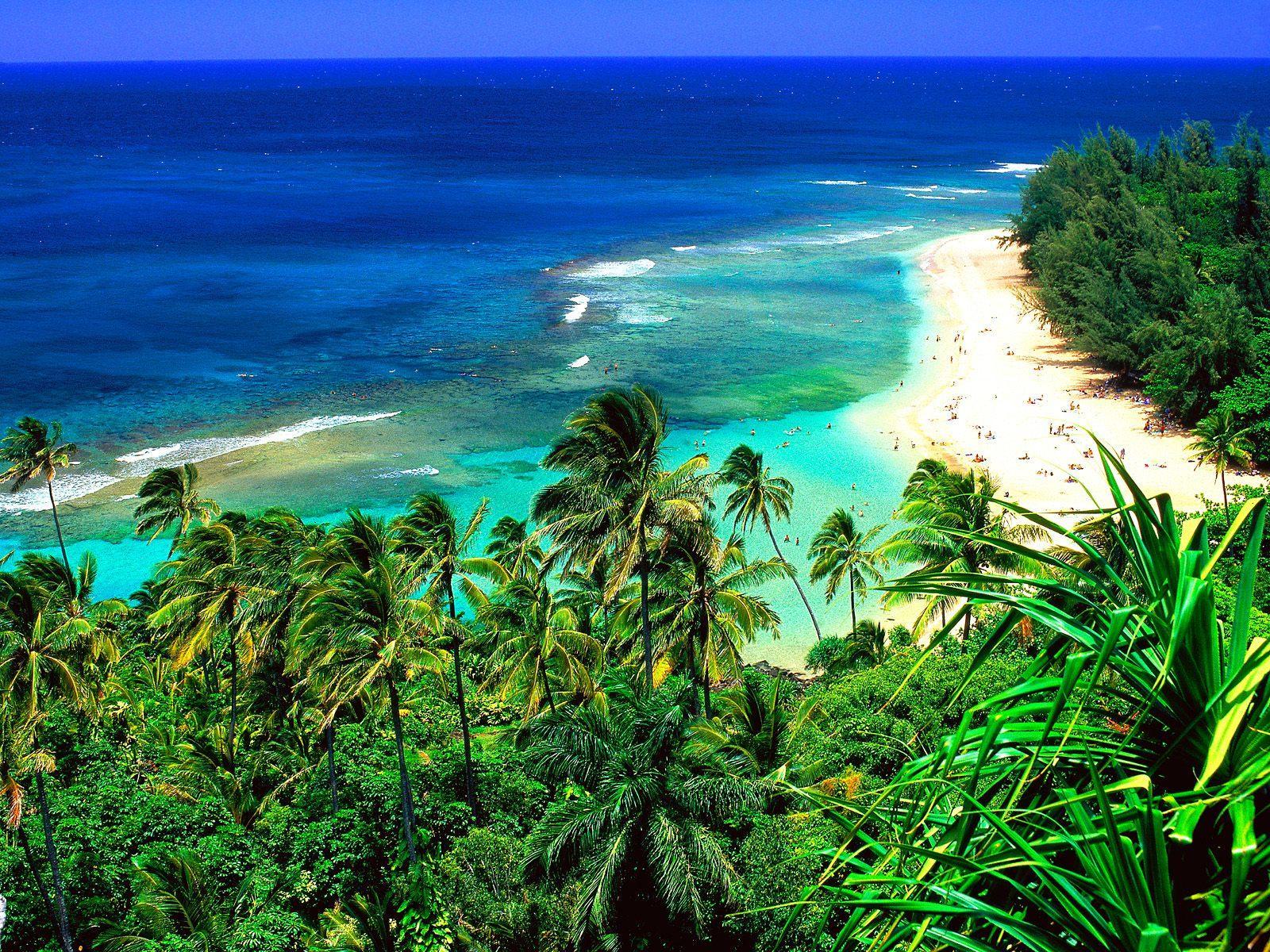 hawaii beach hd wallpapers hawaii beach pictures hawaii beach pictures