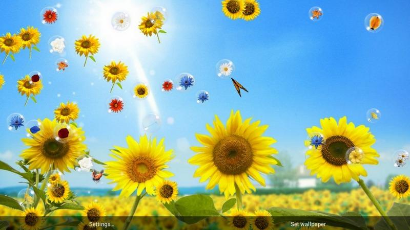 Flowers Live Wallpaper   Android Apps and Tests   AndroidPIT 800x450