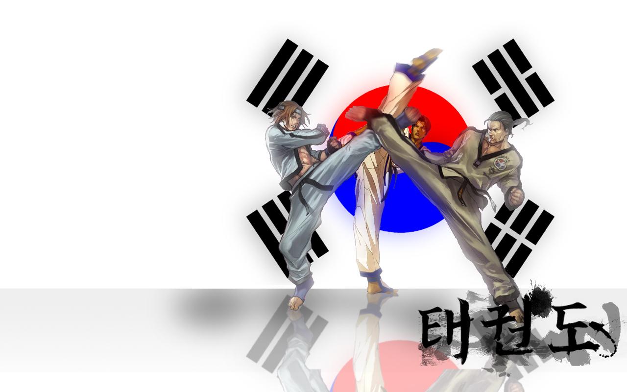 Gallery For Taekwondo Fan Wallpaper 1280x800