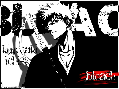 Bleach Anime images Bleach HD wallpaper and background photos 2220736 500x375