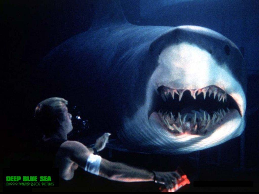 Download Deep Blue Sea Normal Wallpaper Full HD Wallpapers 1024x768