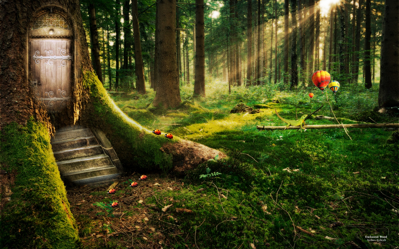 Enchanted forest wallpaper for home wallpapersafari for 90s wallpaper home
