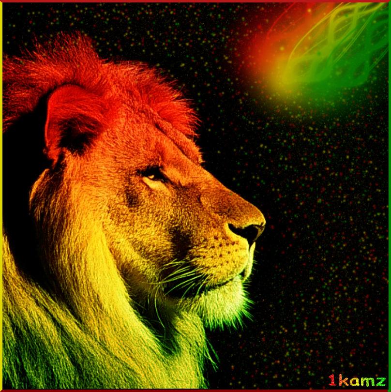 rasta lion wallpaper iphone - photo #19