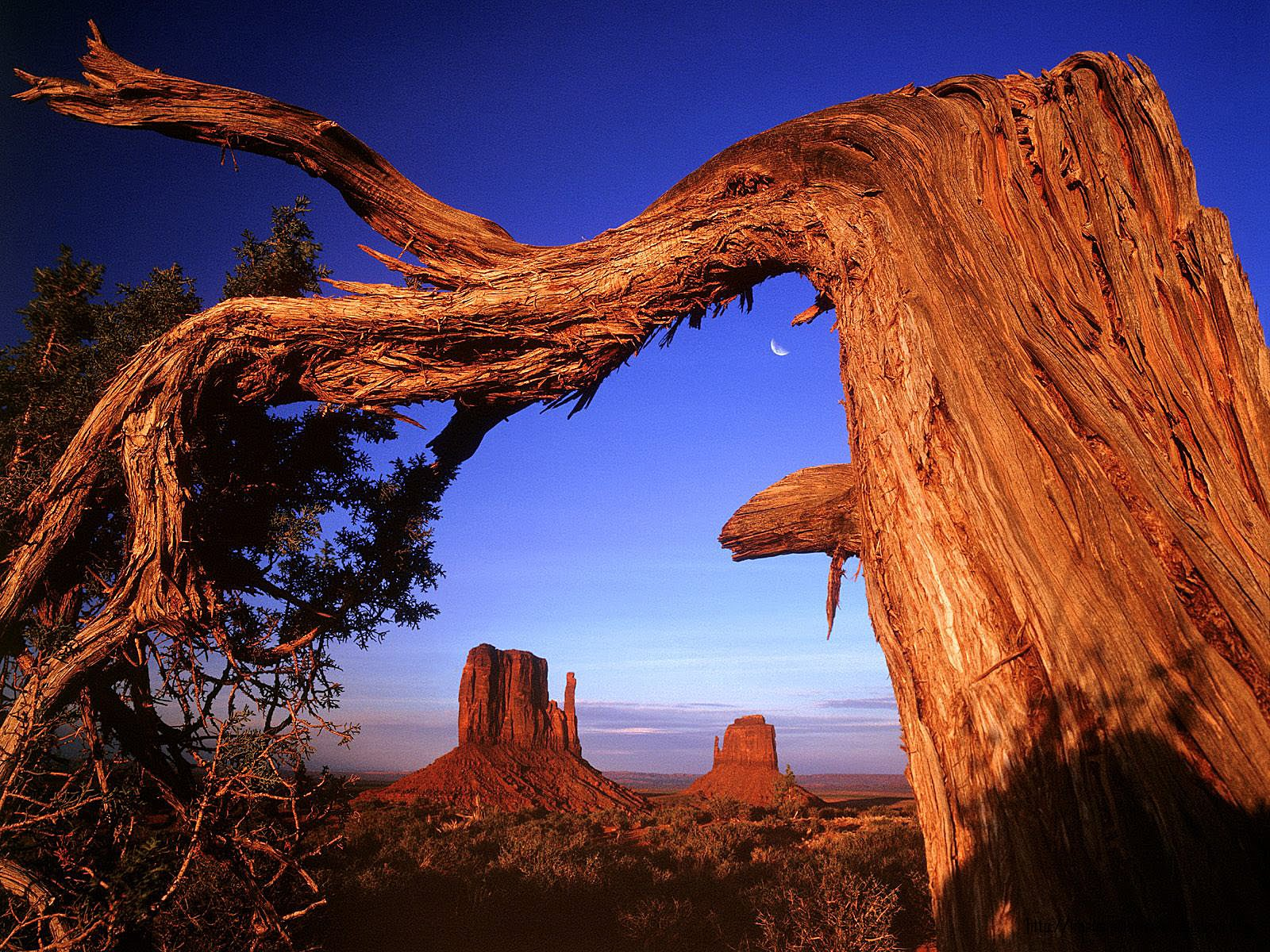 National Park Wallpapers World Wide National Park Natural 1600x1200