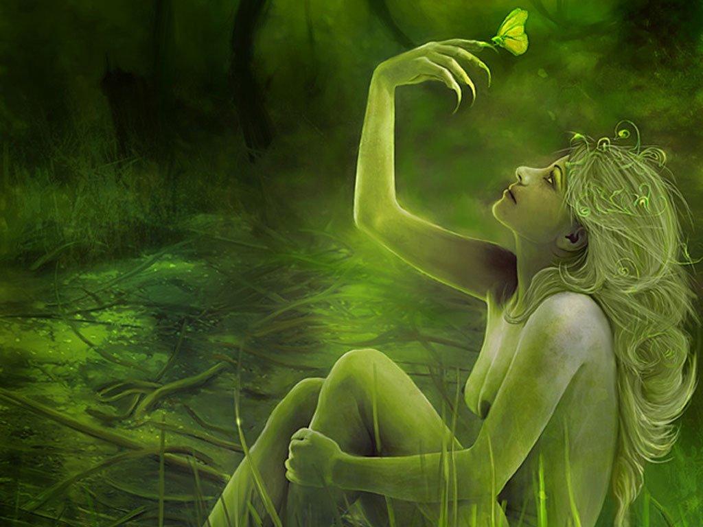 HD Wallpaper HQ Desktop Background Art Images live green butterfly 1024x768