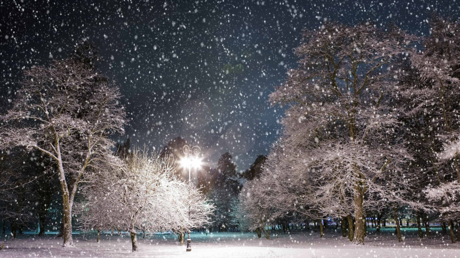 Winter Night Mac Wallpaper Download Mac Wallpapers Download 1920x1080