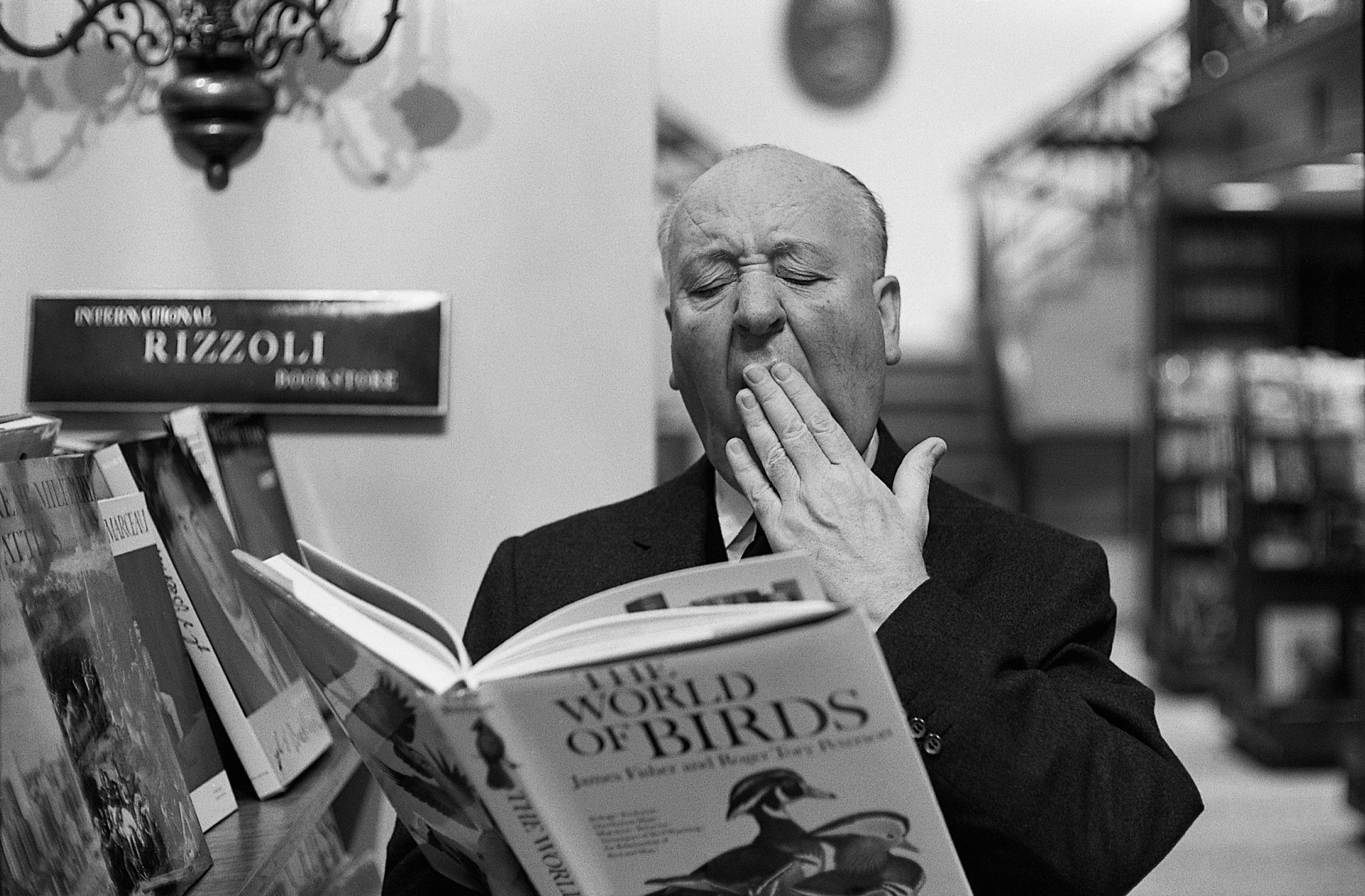 3 Alfred Hitchcock HD Wallpapers Background Images 4048x2657