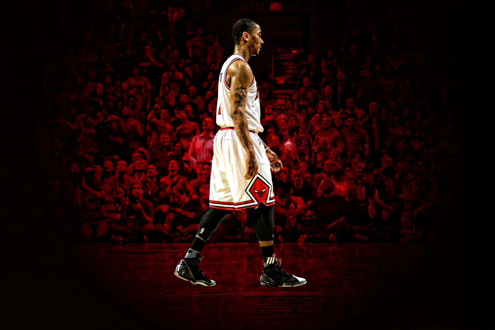 derrick rose wallpaper 1600x1067