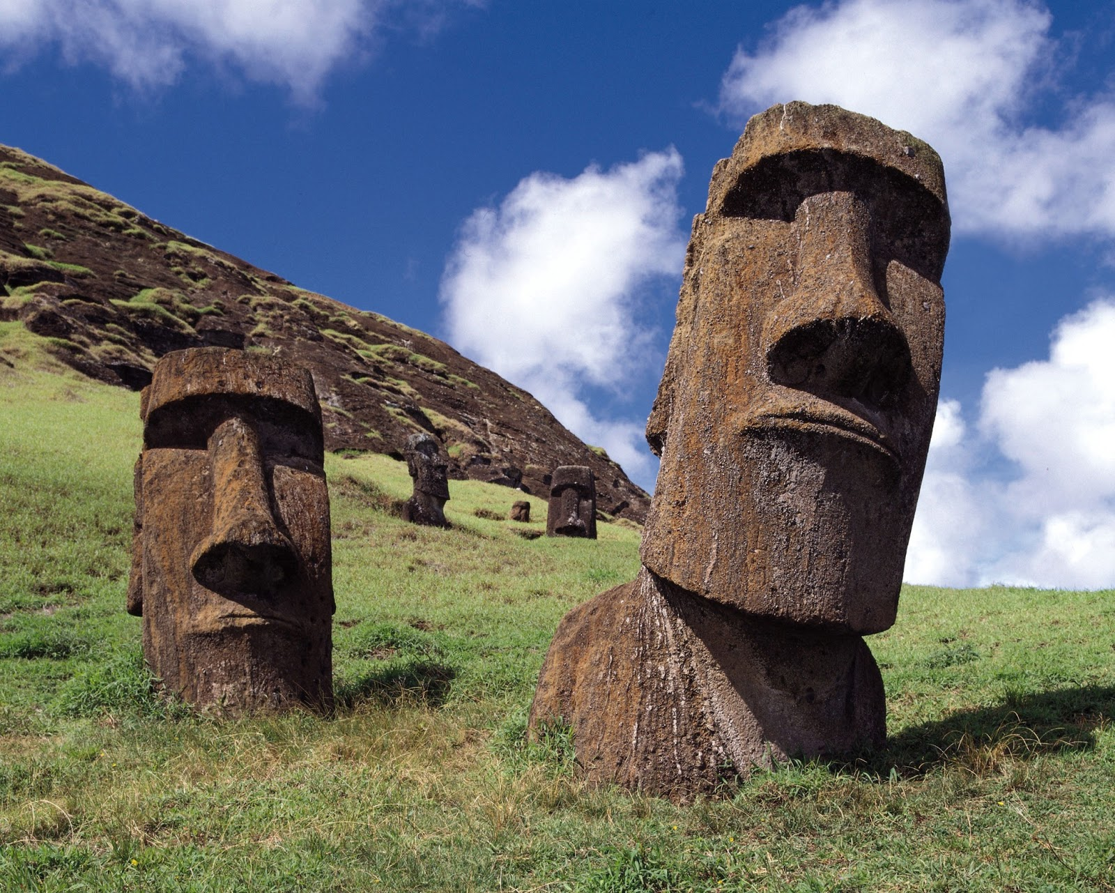 Easter Island How did the Moai Move 1600x1281