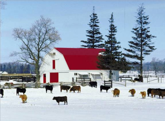Winter farm wallpaper wallpapersafari - Winter farm scenes wallpaper ...