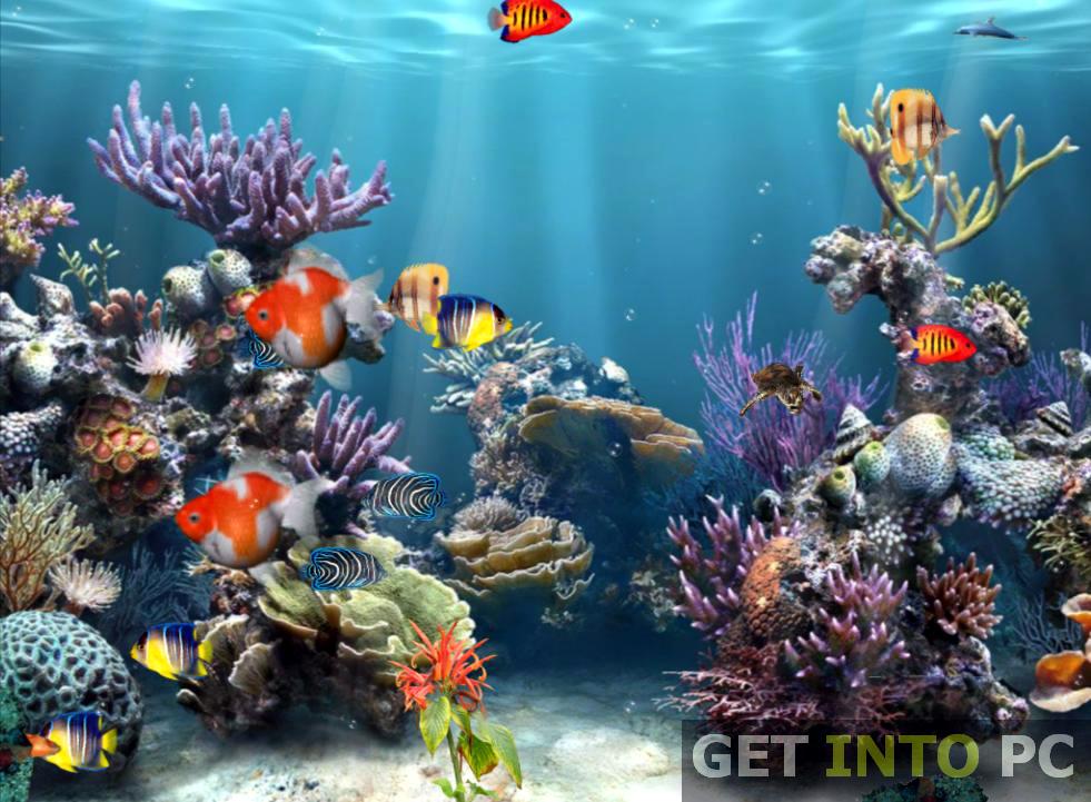 Free Download Aquarium 3d Screensaver Download For 981x721 For Your Desktop Mobile Tablet Explore 49 Aquarium Wallpaper Free Download Aquarium Live Wallpaper For Pc Aquarium Wallpaper Moving Windows 10