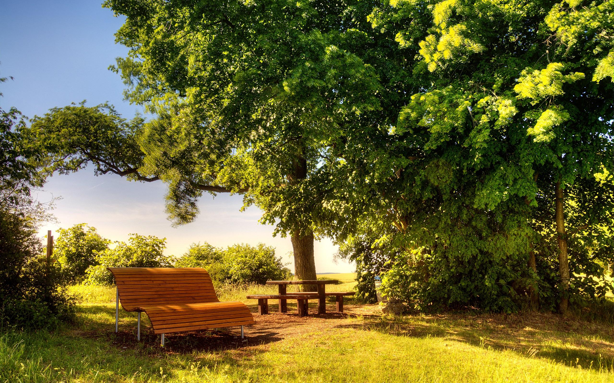 Beautiful Sunny Day wallpaper 2560x1600 29420 2560x1600