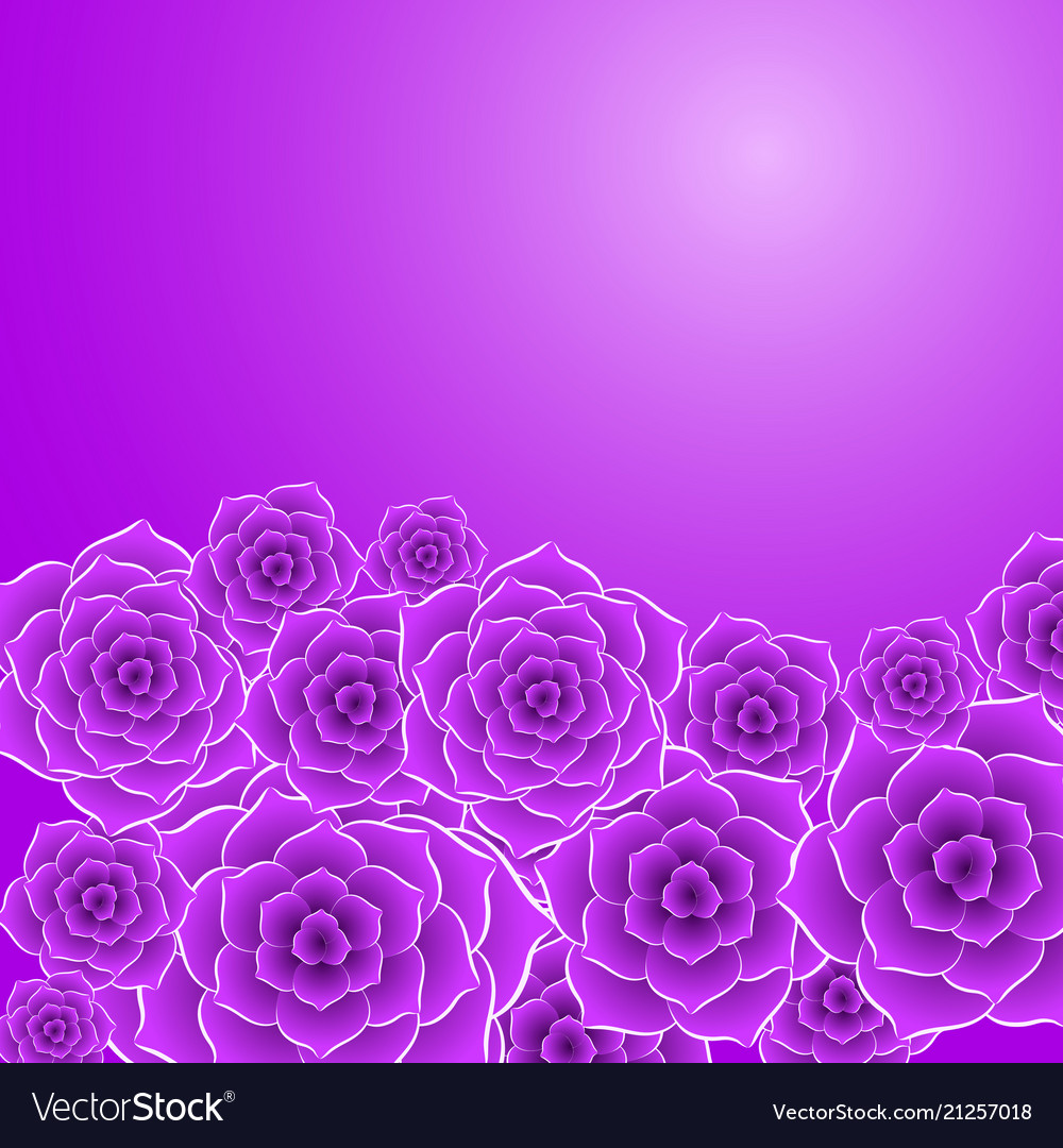 Beautiful violet rose flower background Royalty Vector 1000x1080
