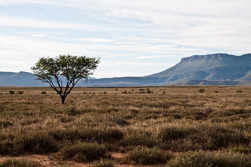 South Africa Landscape Creative Commons Wallpaper 6 Flickr   Photo 500x333