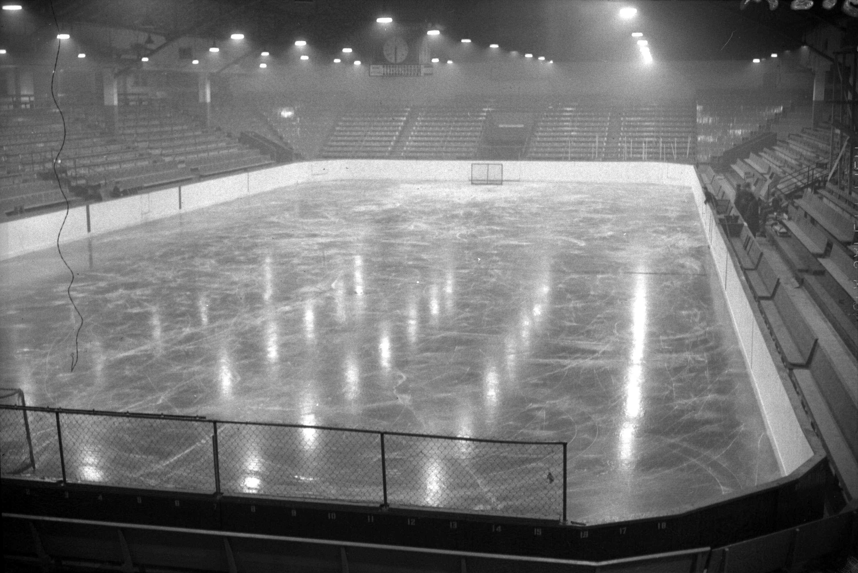 whl eishockey