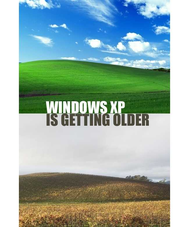 windows xp default wallpaper location