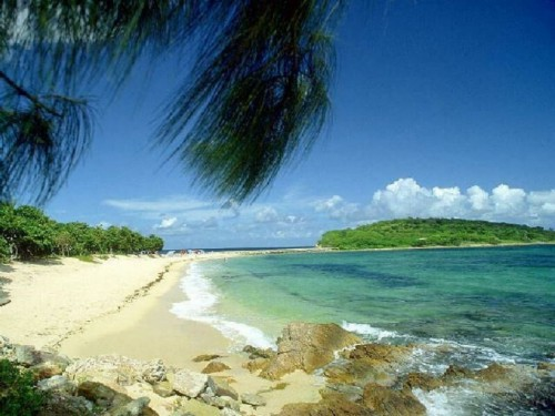 Hd Tropical Island Beach Paradise Wallpapers And Backgrounds: Free Tropical Screensavers And Wallpaper