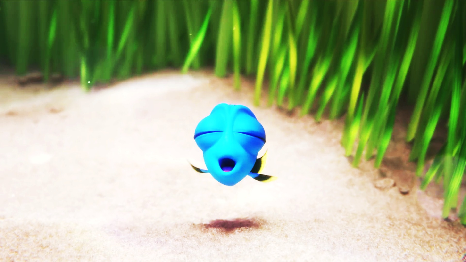 download Finding Dory Wallpapers 30 Wallpapers Adorable 1920x1080