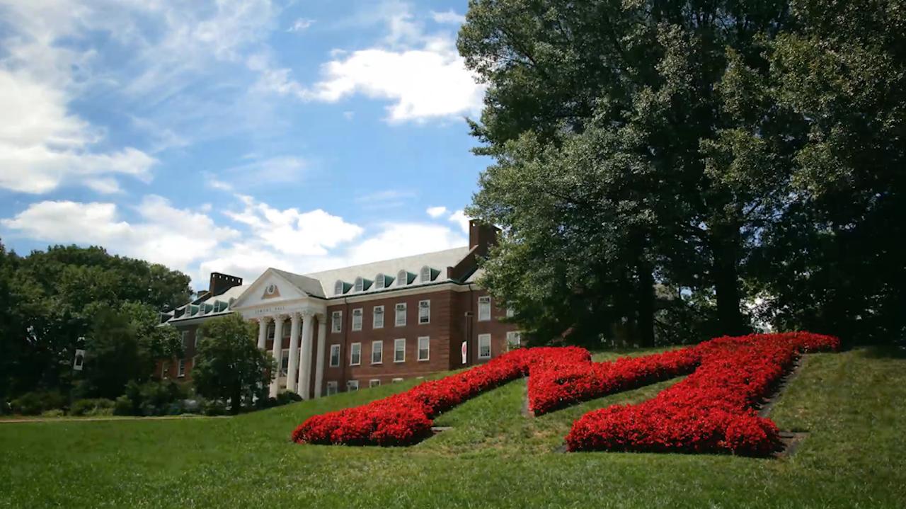 The University of Maryland Brand Toolkit 1280x719