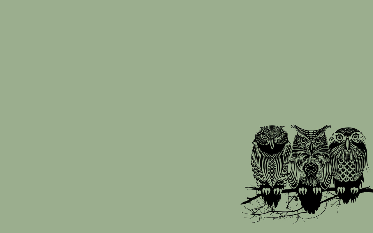 49 Owl Wallpapers For Computers On Wallpapersafari