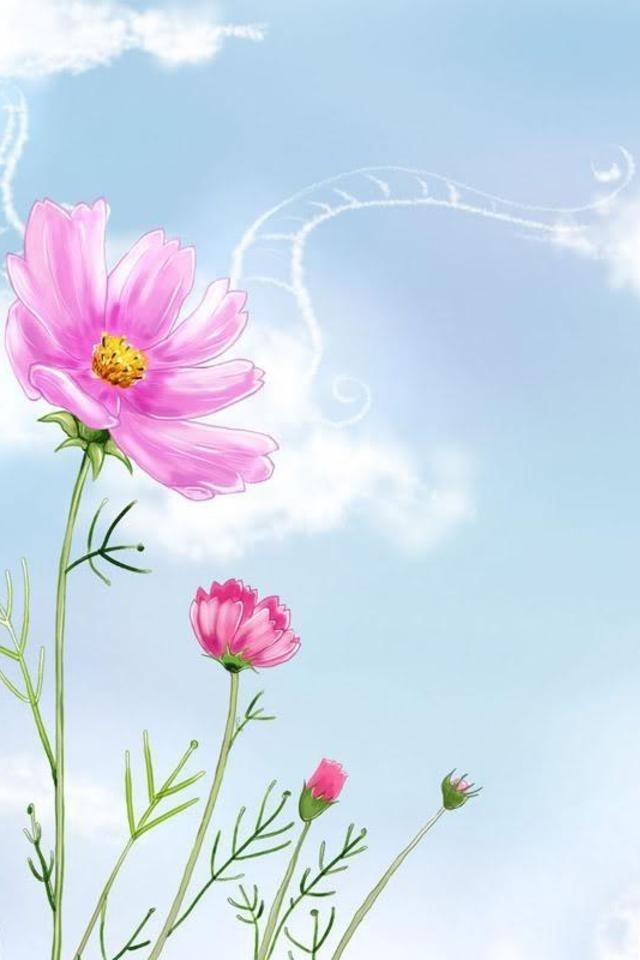 49 Cute Floral Iphone Wallpapers On Wallpapersafari