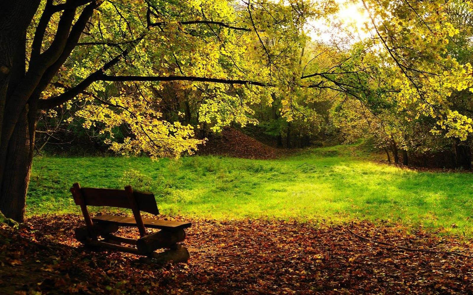Sceneries Desktop Wallpapers Peaceful Sceneries Desktop Backgrounds 1600x1000