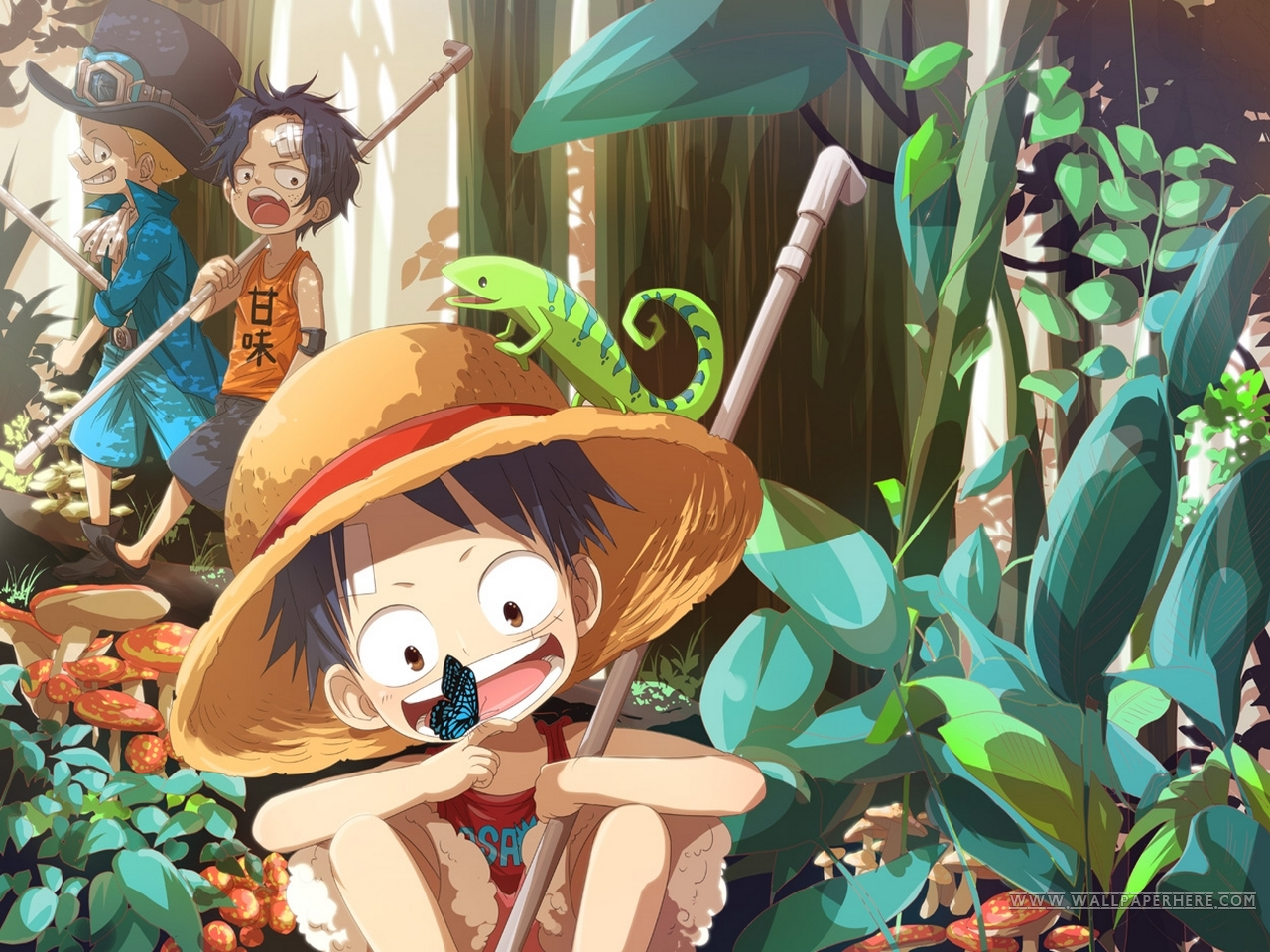 10 Gorgeous One Piece Anime HD Wallpapers   Design Hey Design Hey 1280x960