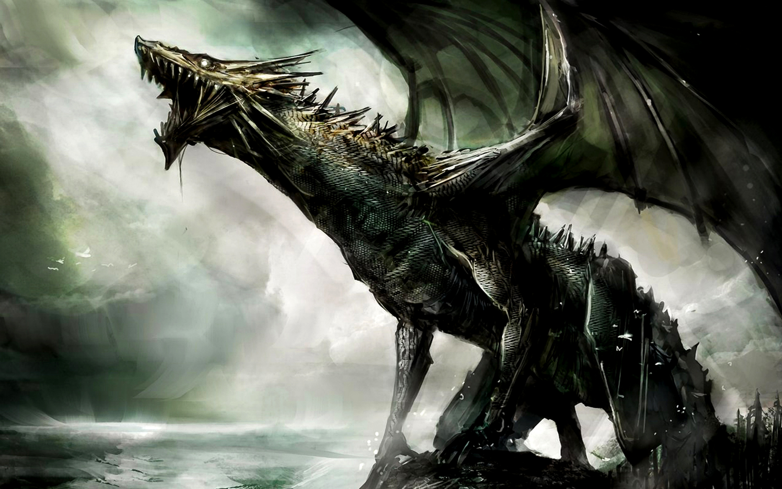 Fantasy Dragon   Dragons Wallpaper 27155051 2560x1600