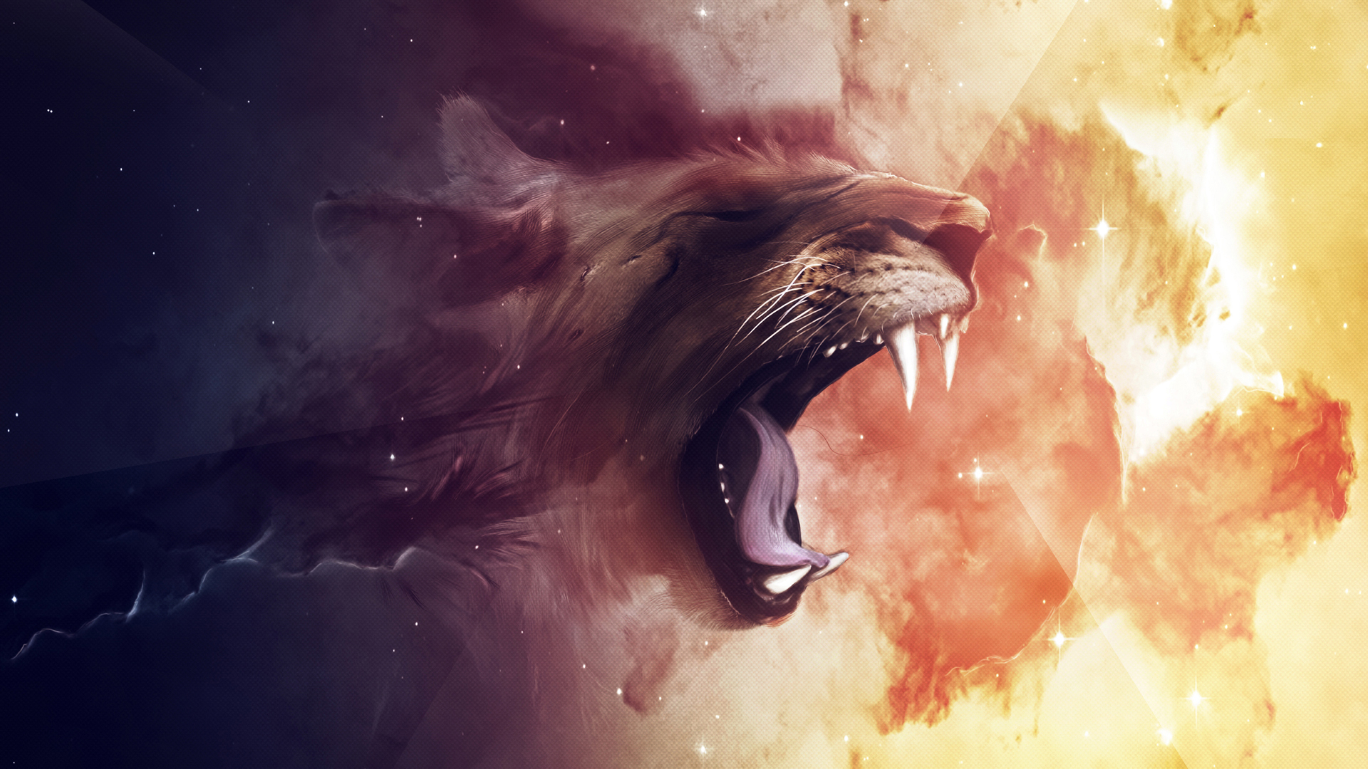 Tags Cool Lion Wallpaper 1920x1080