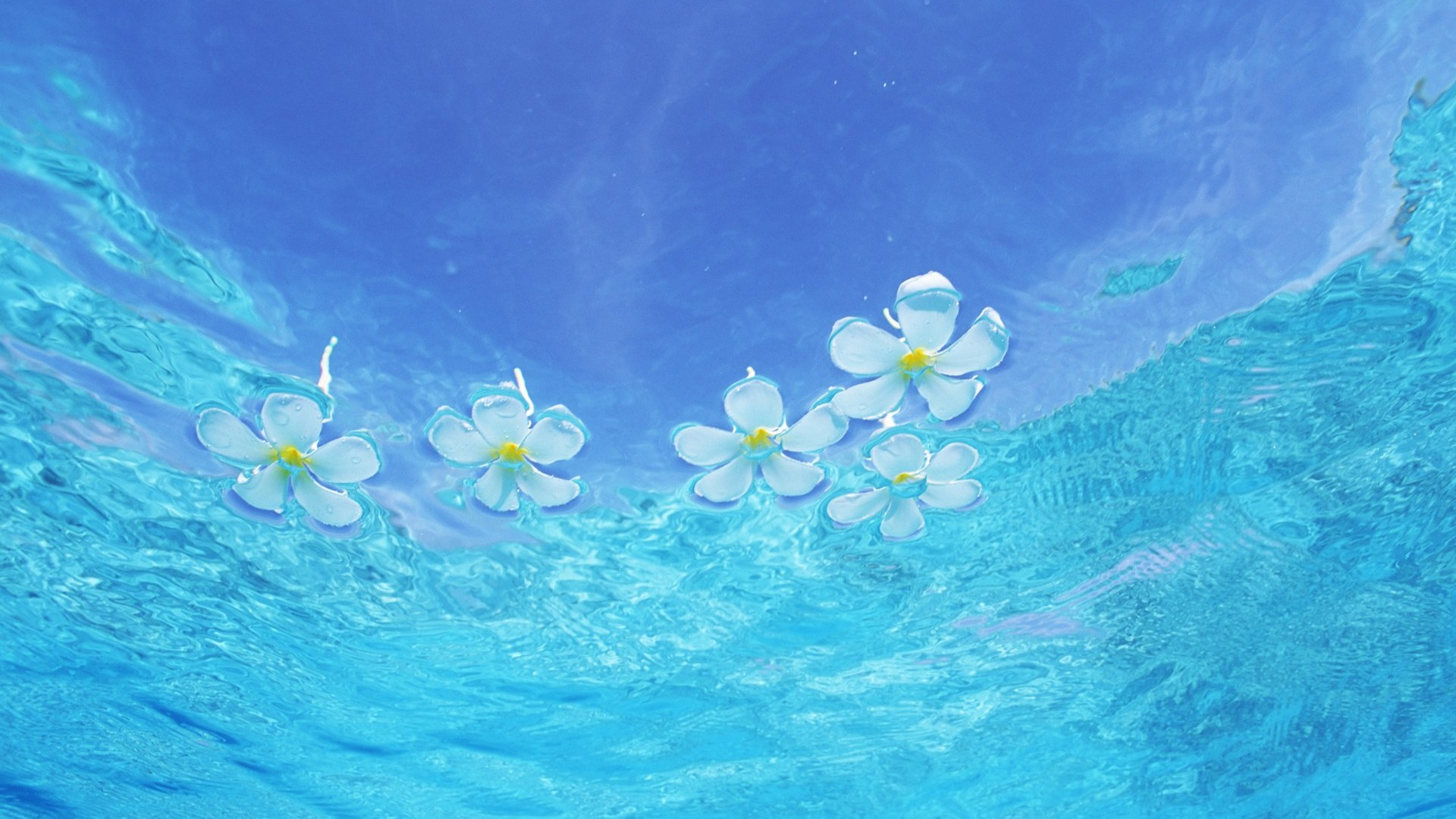 Water Full HD Wallpaper and Background 1920x1080 ID212421 1920x1080