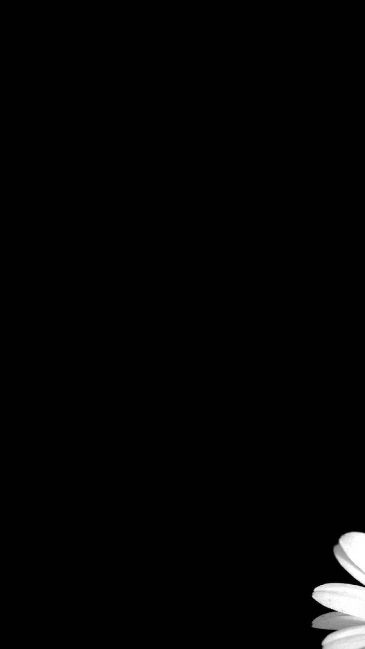 Free Download Black Background Hd Wallpapers Desktop Backgrounds 1242x2208 For Your Desktop Mobile Tablet Explore 78 Images With Black Background Images With Black Background Black Wallpaper Images Black Background Images