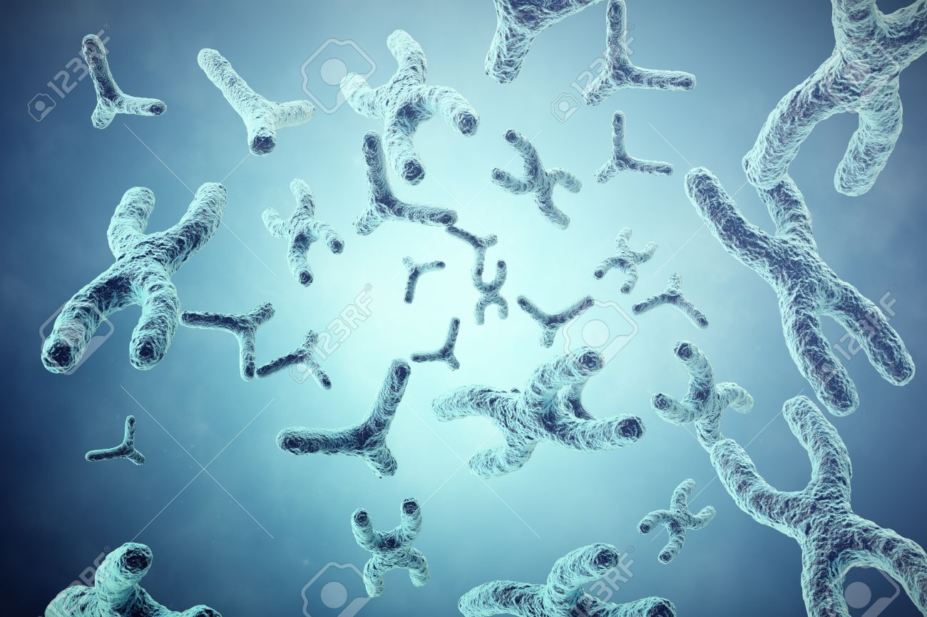XY chromosomes On Grey Background Scientific And Biology Concept 1300x866