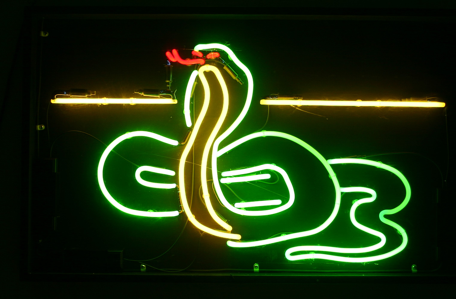 Neon Circus neon signs for hire 1523x1000
