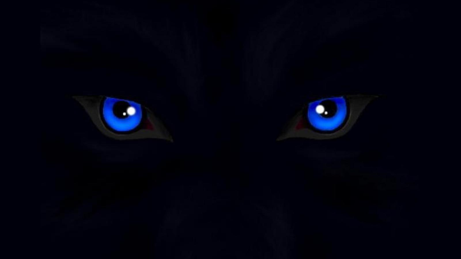 Crying Eyes HD desktop wallpaper : Widescreen : High Definition .