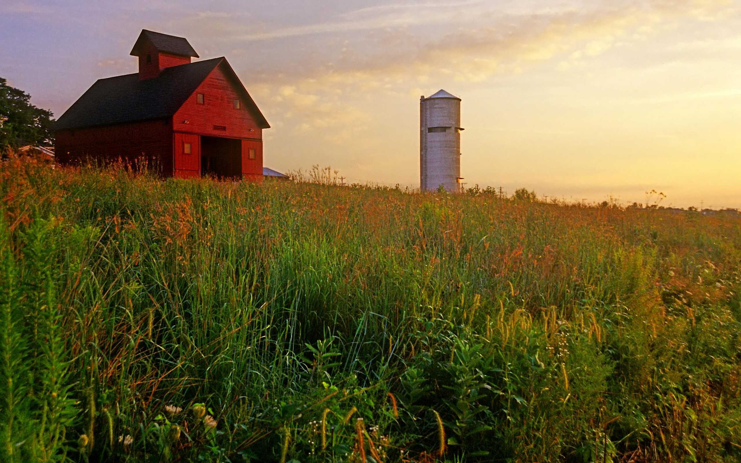 Other Wallpapers   Download Peck Farm Granary and Silo Kane 2560x1600