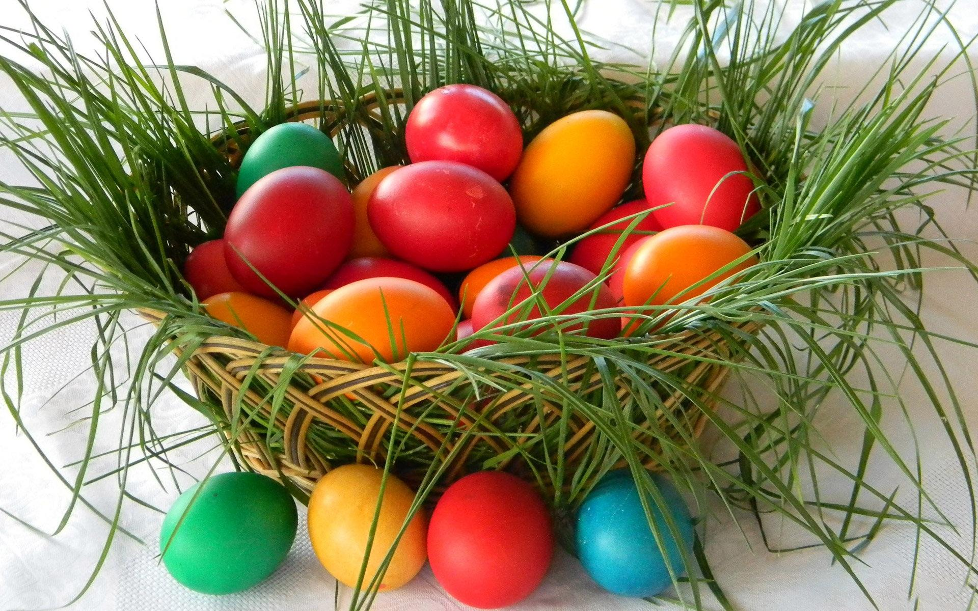 Free Download Happy Easter Egg Download Easter Sunday Greeting