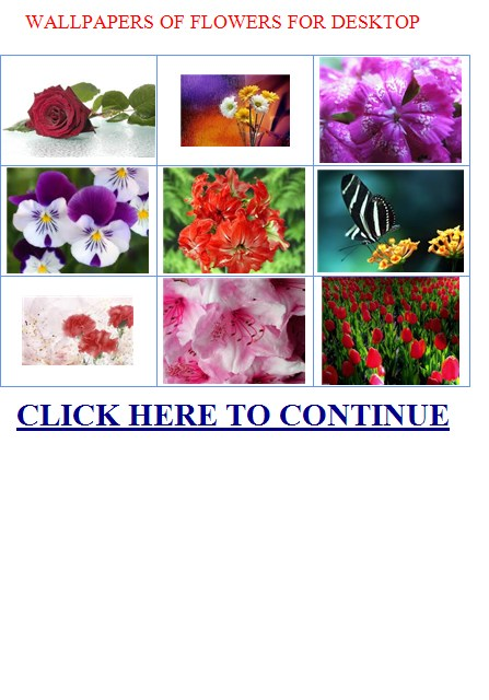WALLPAPERS OF FLOWERS FOR DESKTOP   EXOTIC FLOWERS NAMES 447x640