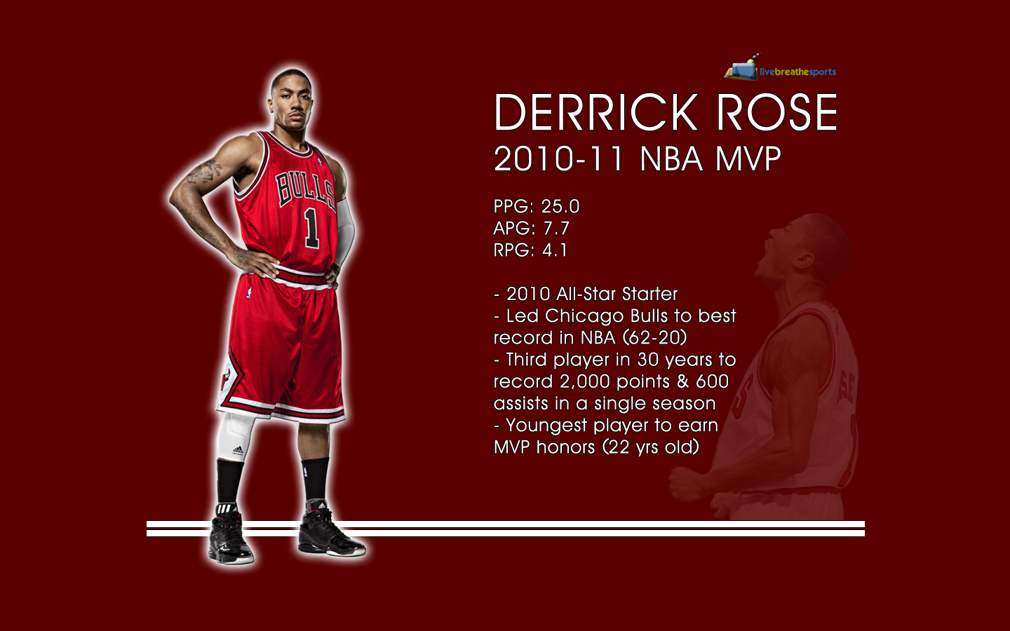 Derrick Rose MVP Wallpaper 1440 x 900jpg 1440x900