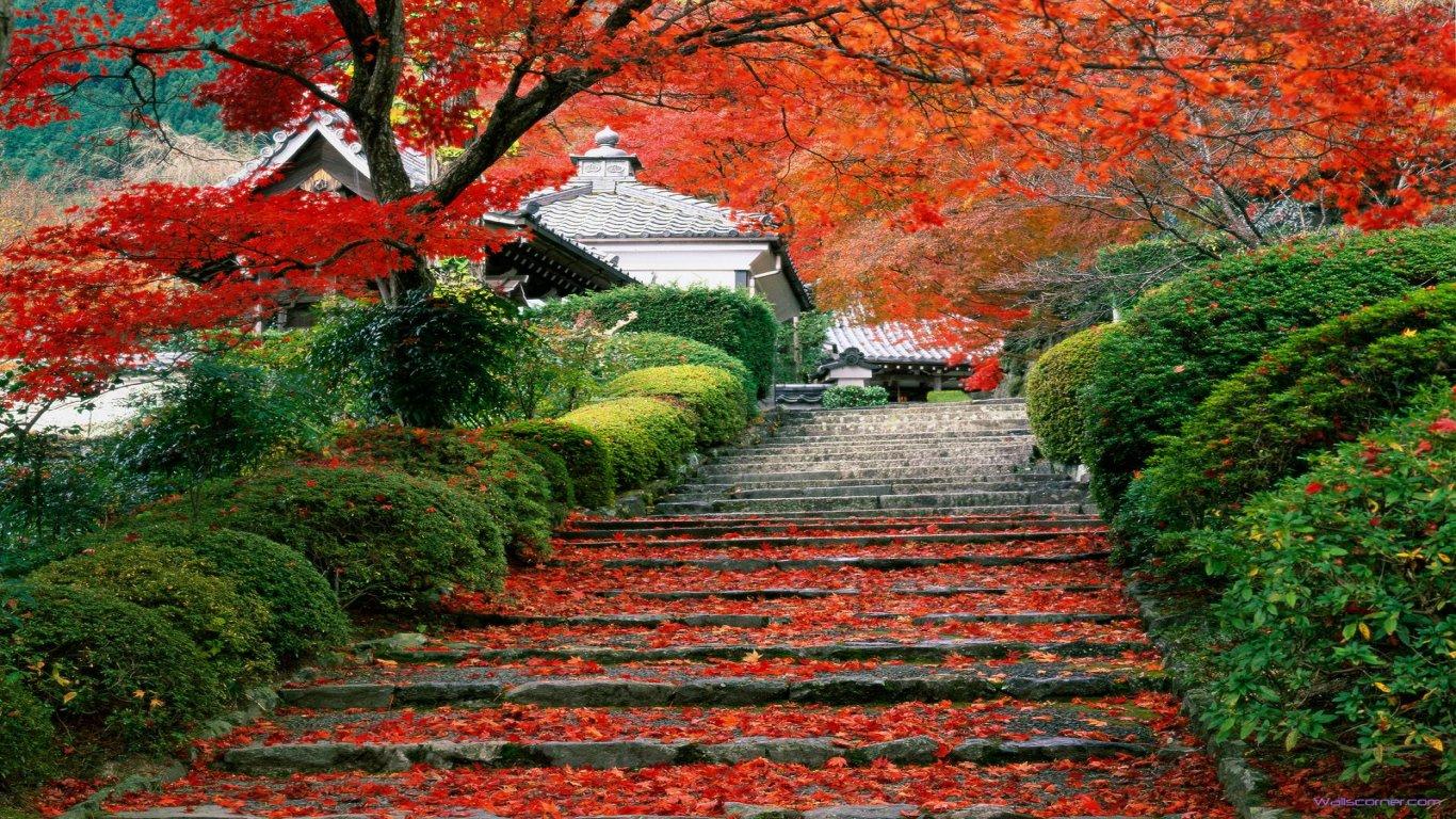 japan beauty garden staircase kyoto japan hd wallpaper wallpaper hd 1366x768