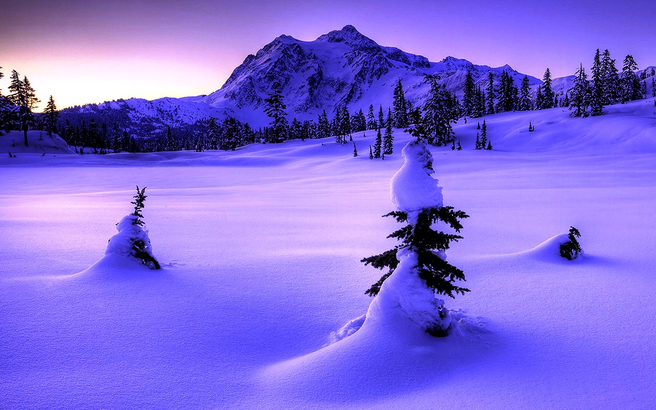 Winter Wallpaper Widescreen High Resolution Wallpapers High Resolution 1280x800